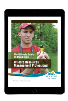 become a wildlife manager.png